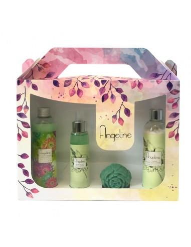 Prosmetic's - Coffret Angéline Fleur de cactus - Prosmetics